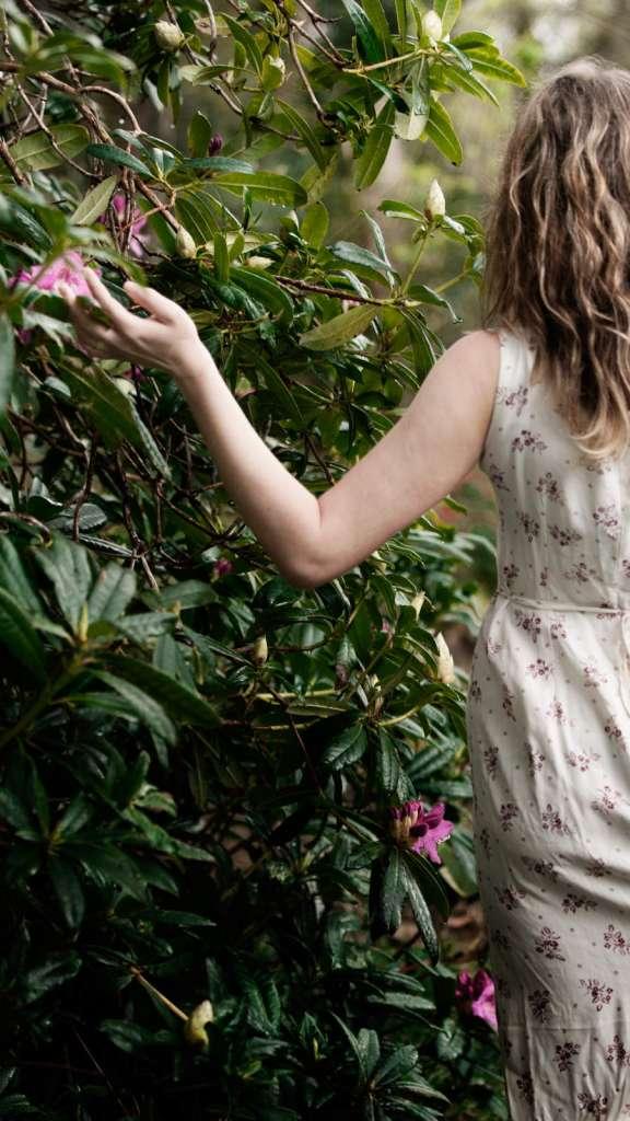I do photography-Dungarvan-Dromana House and Gardens